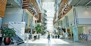 Noruega: Becas para Pregrado y Maestría en Administración y Negocios Norwegian Business School