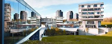 Reino Unido: Becas para Maestría en Administración y Negocios Essex University