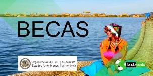 Online: Diplomado en Estudios Ambientales OEA/Fondo Verde