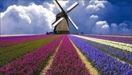 Holanda: Beca Pregrado y Maestría en  Ciencias Aplicadas  Universidad  Saxion