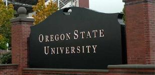 Online: Becas para Certificación Avanzada en Enseñanza del Idioma Inglés (ACE) Universidad de Oregon/OEA