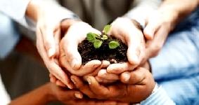 Online: Diplomados en Ecoturismo y Estudios Ambientales OEA/Fondo Verde