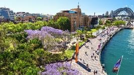 Australia: Becas para Postgrado en Varios Temas Elite Editing