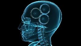 Video Conferencia: Teorías y Sistemas Psicológicos