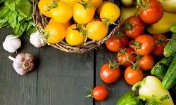 Humanismo Gastronómico, el placer de comer