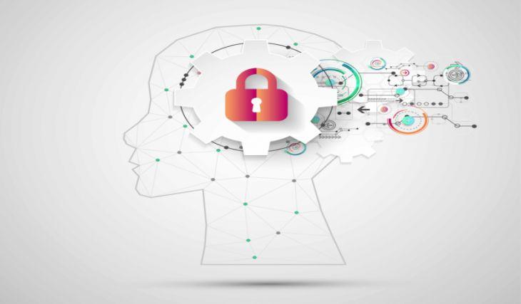 Información sobre la Propiedad Intelectual