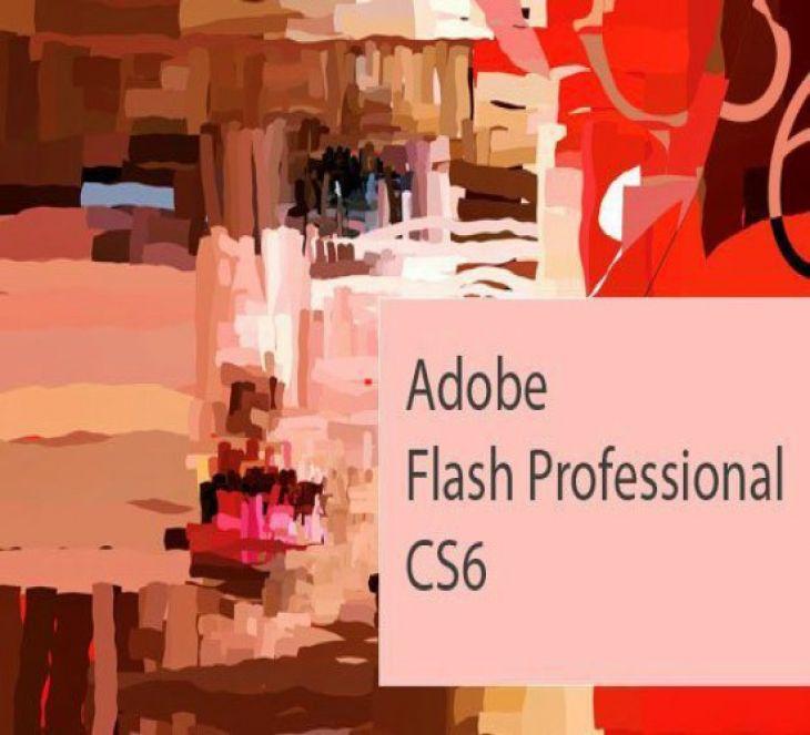Curso Básico de Adobe Flash Professional CS6