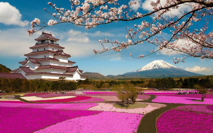 Japón: Beca Maestría en Diversas Áreas  Asociación Japonesa de Mujeres Universitarias