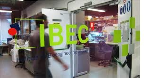 España: Beca Postdoctorado Diversas Áreas IBEC
